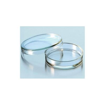 Caja de Petri de Pared Reforzada 100x20 mm